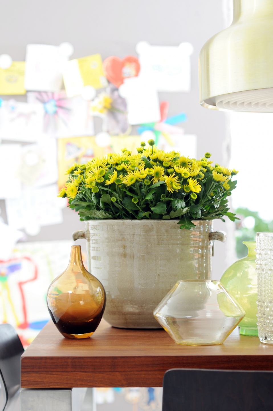 how to take care of chrysanthemum