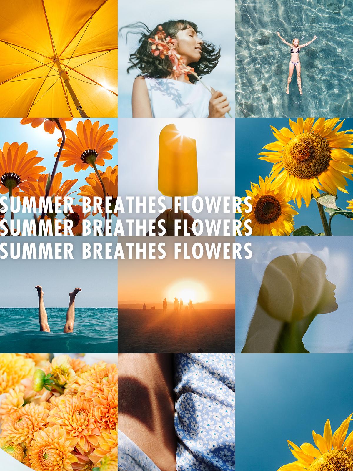 Summer Breathes Flowers on Funnyhowflowersdothat.co.uk