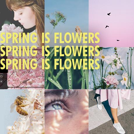 Spring is Flowers