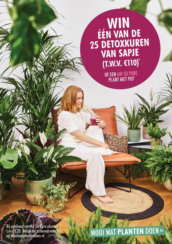 Thanks plants Dutch shopper activation