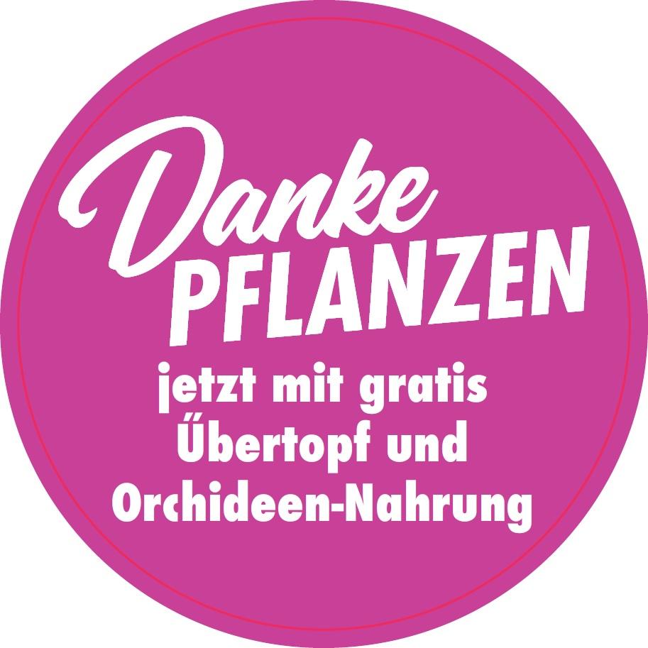 Duitse shopper activatie orchideeën bij Kaufland