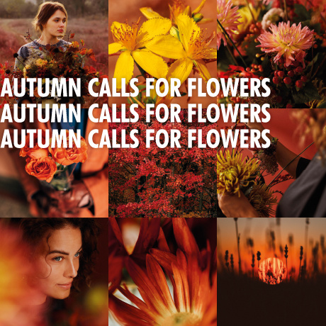 Autumn calls for flowers