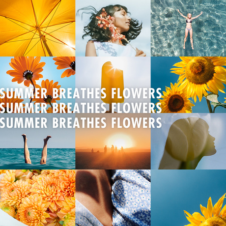 Summer Breathes Flowers on Funnyhowflowersdothat.co.uk