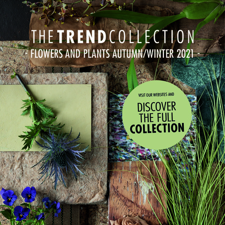 The Trend Collection Autumn/Winter 2021 Launch