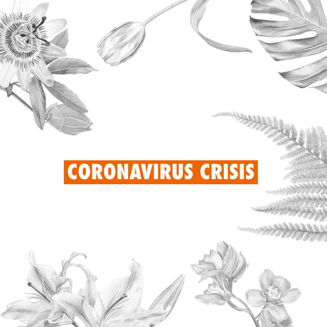 The Flower Council of Holland shares the sector's coronavirus crisis concerns