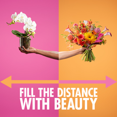 Fill the distance with beauty campaign image