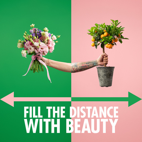 Results of 'Fill the distance with beauty' campaign