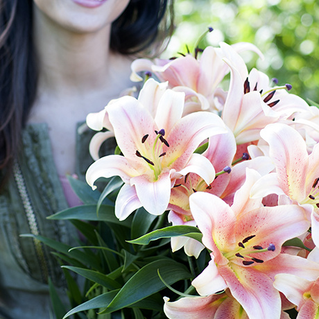 Flower agenda 2015 the lily