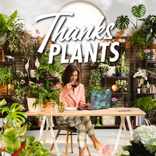 Thanks Plants campaign celebrates plants in the home office