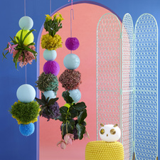 The houseplants in The Trend Collection Spring/Summer 2021