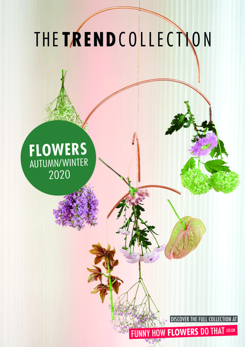 The Trend Collection Autumn/Winter | Flower Collection