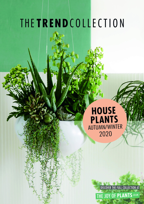 The Trend Collection Autumn/Winter | Houseplants Collection