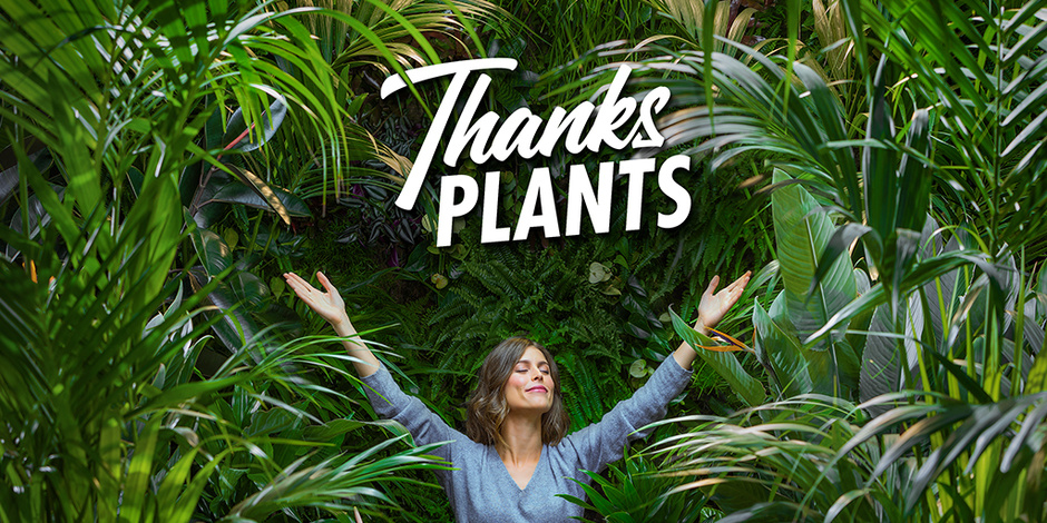 Thanks Plants!  -Thejoyofplants.co.uk