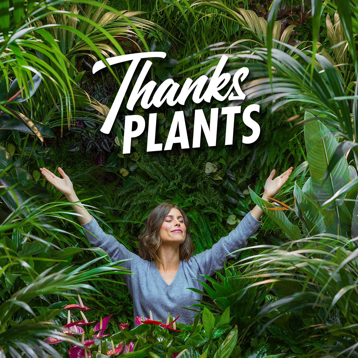 Thanks Plant campaign