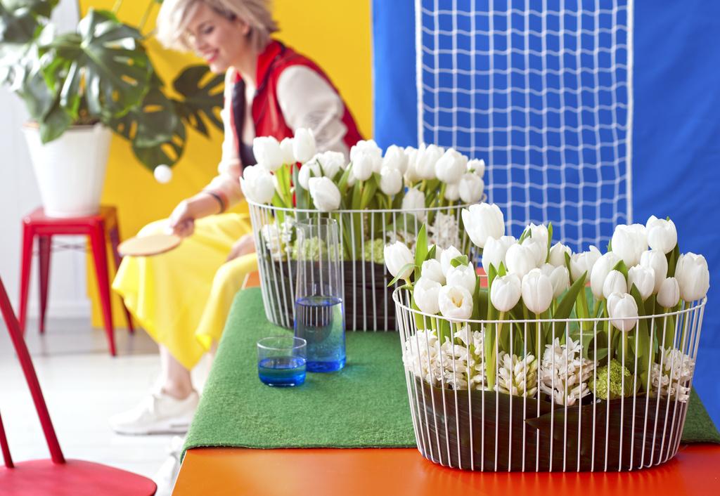 Bloemenagenda januari: de Tulp